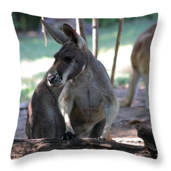 Kangaroo-2 Throw Pillow by Gary Gingrich Galleries