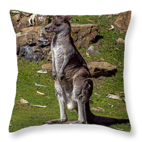 Kangaroo Throw Pillow by Garry Gay