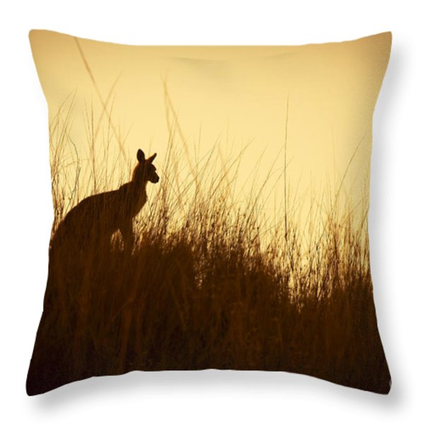 Kangaroo Silhouettes Throw Pillow by Tim Hester
