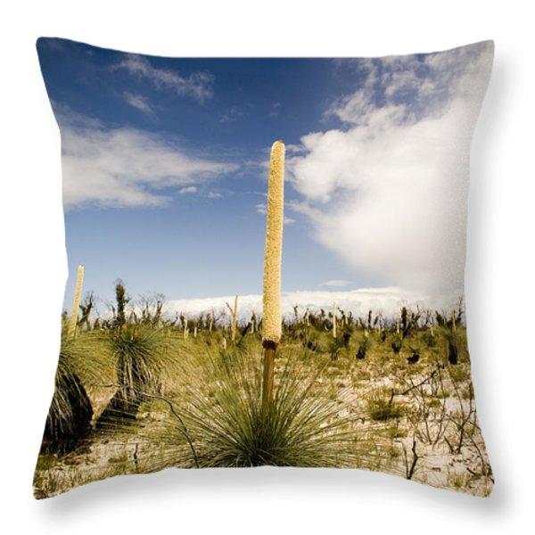 Kangaroo Tail Throw Pillow by Tim Hester