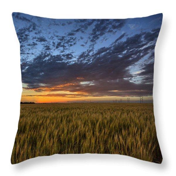 Kansas Color Throw Pillow by Thomas Zimmerman