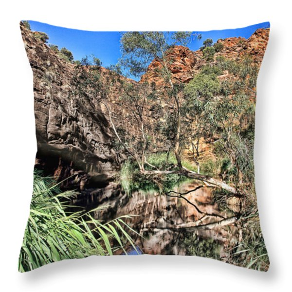 Kathleen Springs V3 Throw Pillow by Douglas Barnard
