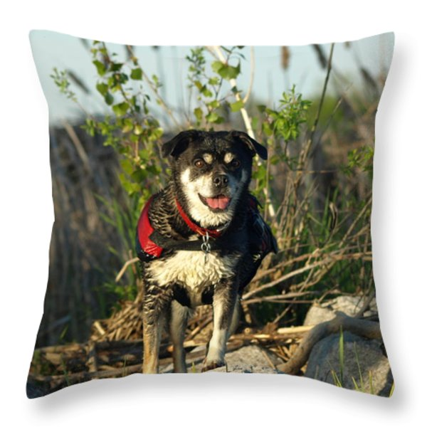 Kayaker's Best Friend Throw Pillow by James Peterson