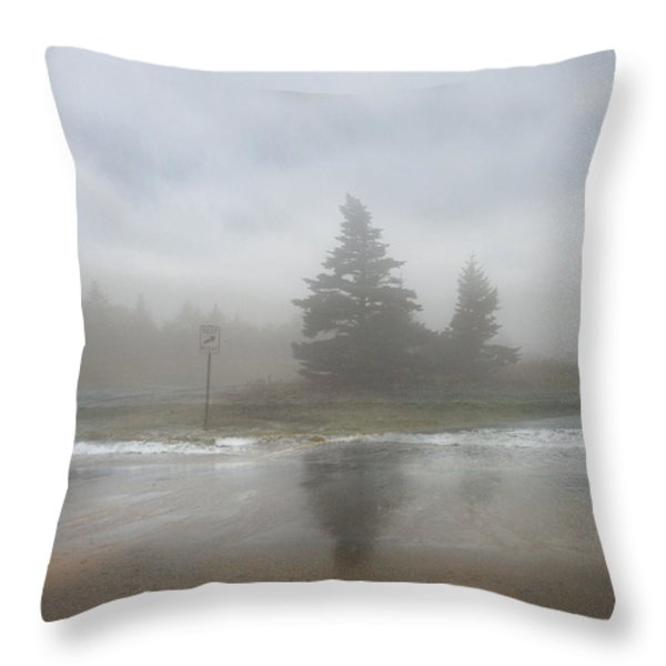 Keep Right Throw Pillow by Juli Scalzi