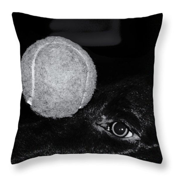 Keep Your Eye On The Ball Throw Pillow by Roger Wedegis