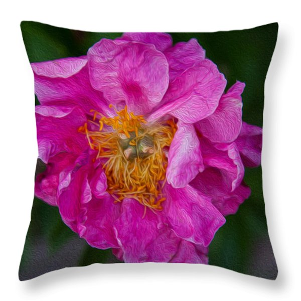 Keeper Of The Light Throw Pillow by Omaste Witkowski