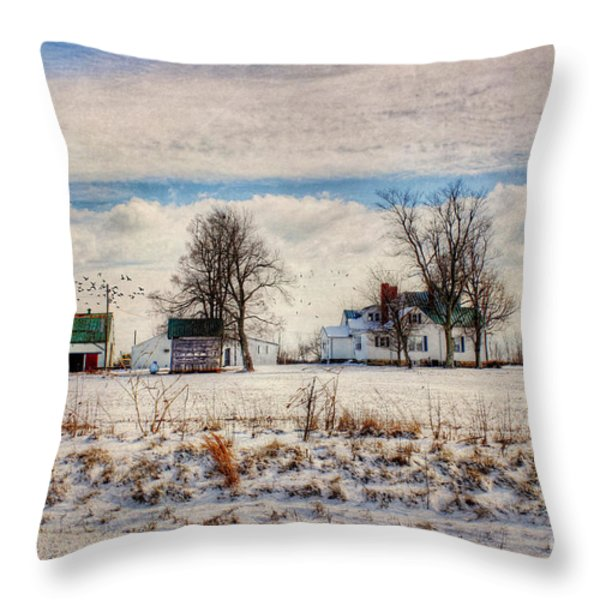 Kentucky Snow Day Throw Pillow by Darren Fisher