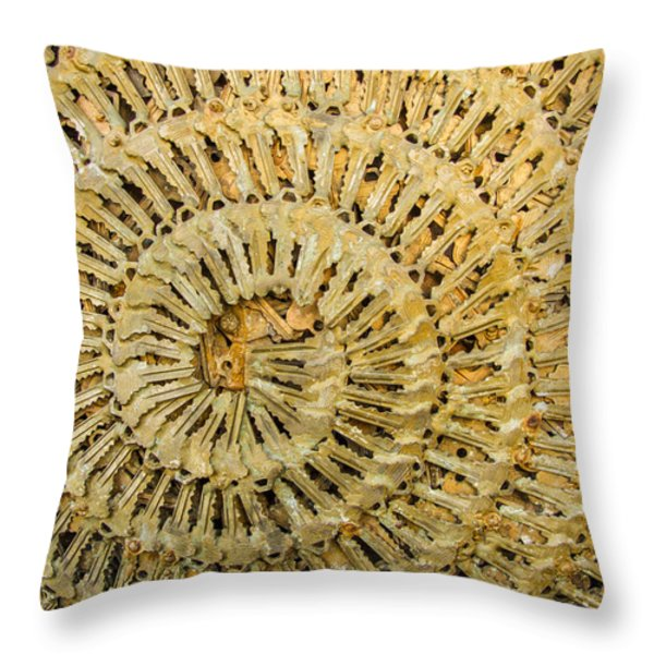 Key Ring Throw Pillow by Jean Noren