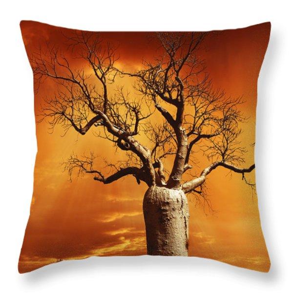 Kimberley Dreaming Throw Pillow by Linda Lees