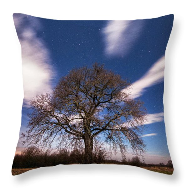 King of the night Throw Pillow by Davorin Mance