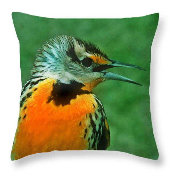 Kingfisher  Sitting On It's Perch Throw Pillow by Lanjee Chee