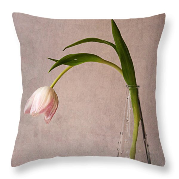 Kiss Of Spring Throw Pillow by Claudia Moeckel