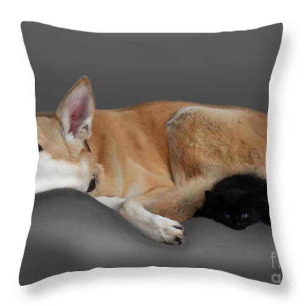 Kitten And Canine Throw Pillow by Linsey Williams