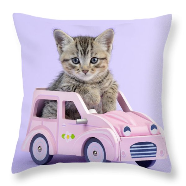 Kitten In Pink Car  Throw Pillow by Greg Cuddiford