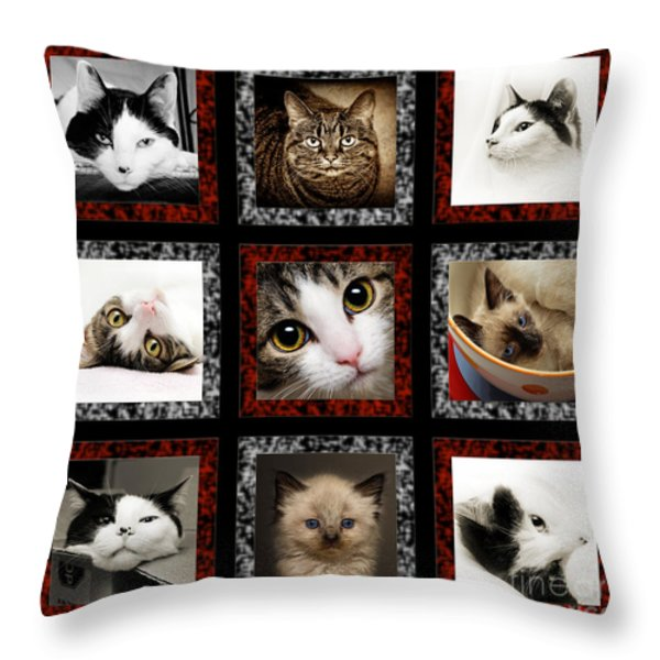 Kitty Cat Tic Tac Toe Throw Pillow by Andee Design