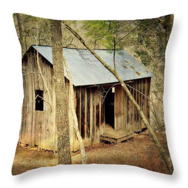 Klepzig Mill 33 Throw Pillow by Marty Koch