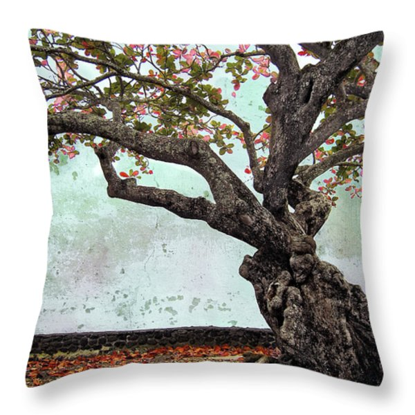 KNOTTED TREE Throw Pillow by Daniel Hagerman