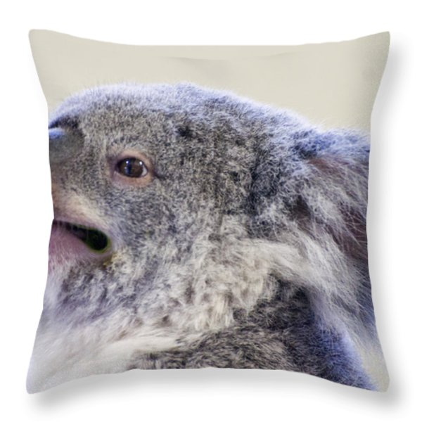Koala Close Up Throw Pillow by Chris Flees