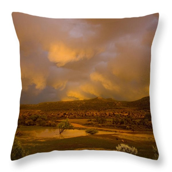 La Boca Rain Throw Pillow by Jerry McElroy