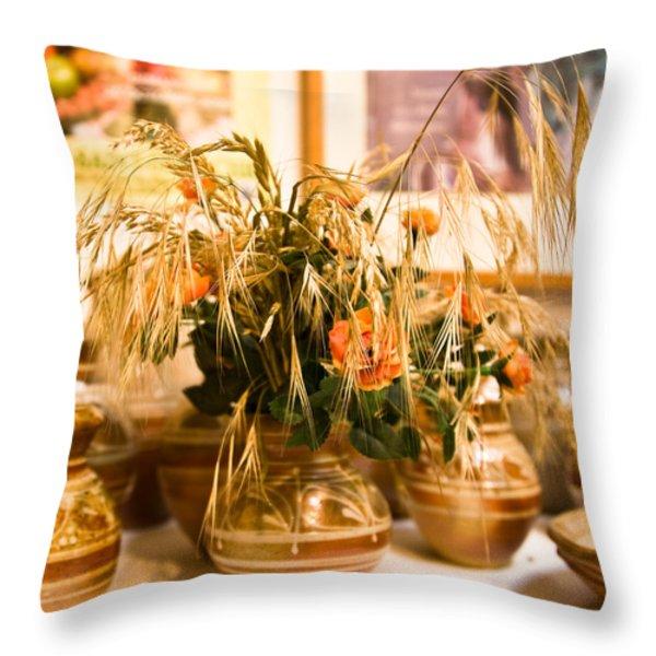 La Borne Pottery Throw Pillow by Oleg Koryagin