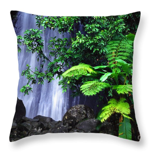 La Coca Falls Throw Pillow by Thomas R Fletcher