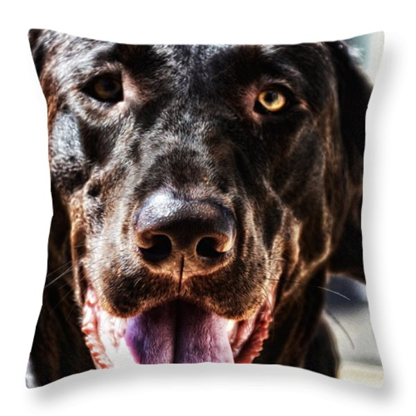 Lab Throw Pillow by Bill Cannon