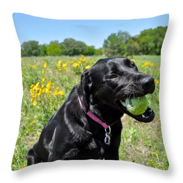 Lab with a Tennis Ball Throw Pillow by Kristina Deane