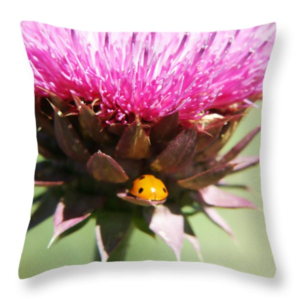 Ladybug And Thistle Throw Pillow by Marilyn Hunt