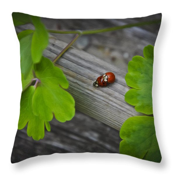 Ladybugs Mating Throw Pillow by Aged Pixel