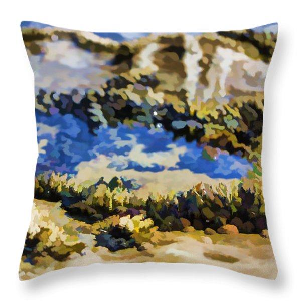 Laguna Beach Tide Pool Pattern 3 Throw Pillow by Scott Campbell