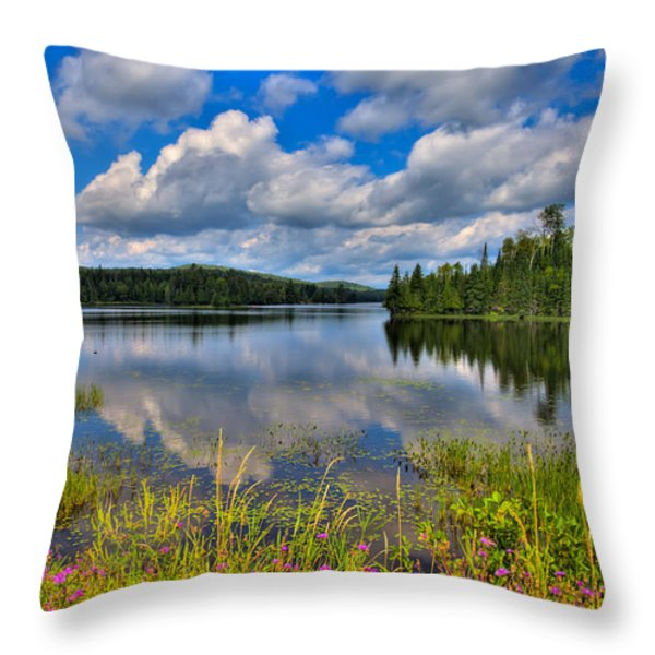 Lake Abanakee in Indian Lake New York Throw Pillow by David Patterson
