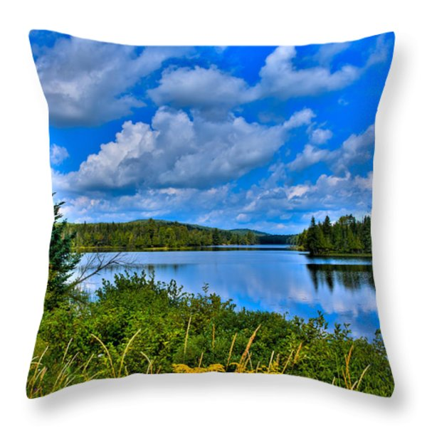 Lake Abanakee - Indian Lake New York Throw Pillow by David Patterson