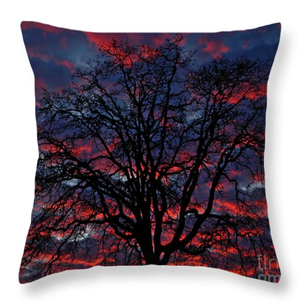 Lake Oswego Sunset Throw Pillow by Nick  Boren