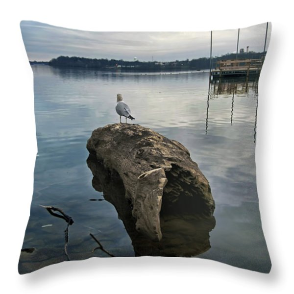 Lakeside Throw Pillow by Steven  Michael