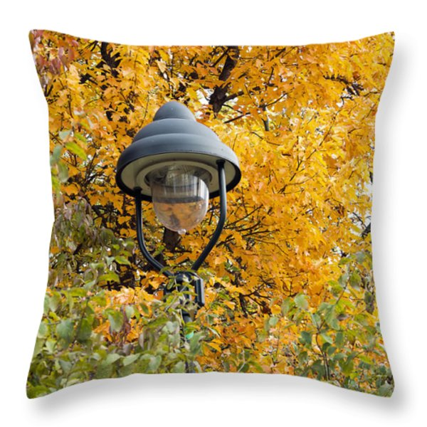 lamp in the autumn leaves Throw Pillow by Michal Boubin