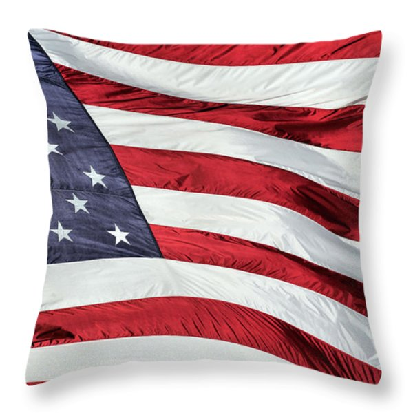 Land of the Free Throw Pillow by JC Findley