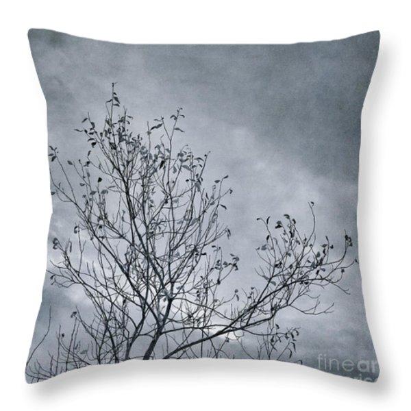 land shapes 16 Throw Pillow by Priska Wettstein