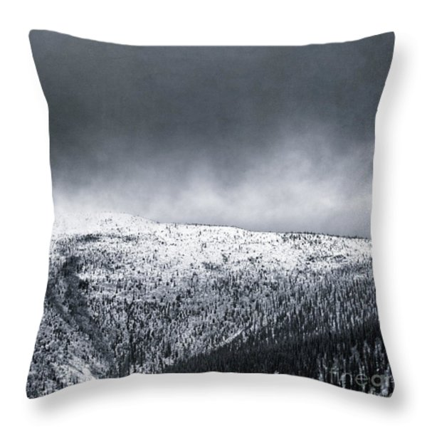 Land Shapes 2 Throw Pillow by Priska Wettstein