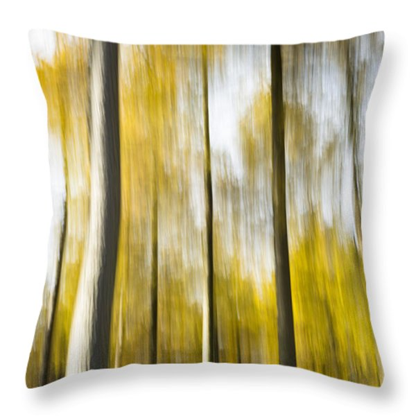 Larch In Abstract Throw Pillow by Anne Gilbert