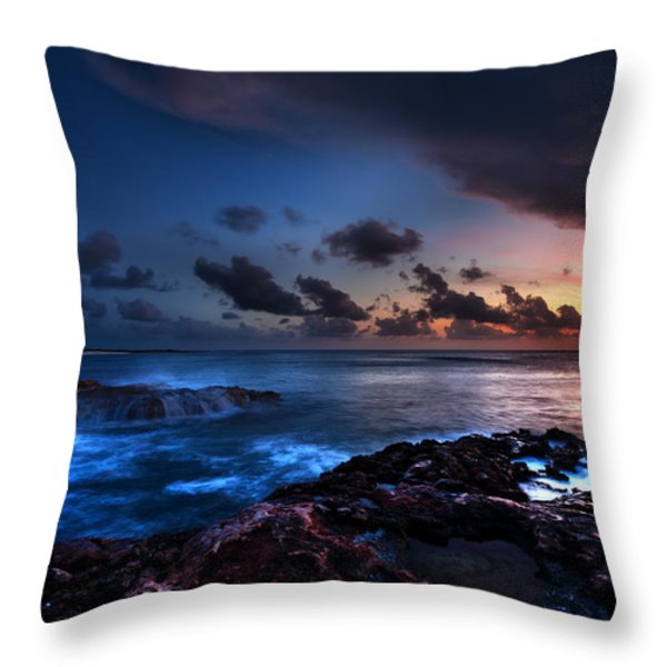 Last Light Throw Pillow by Chad Dutson