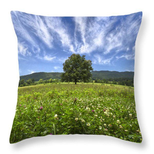 Last Tree Throw Pillow by Debra and Dave Vanderlaan