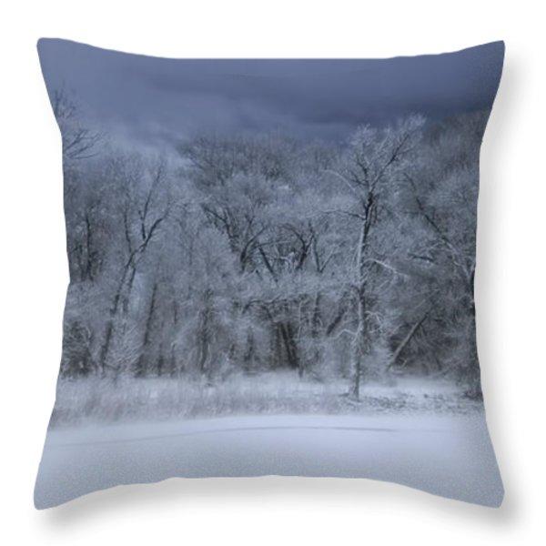 Late Snow at the Rio Grande Throw Pillow by Ellen Heaverlo