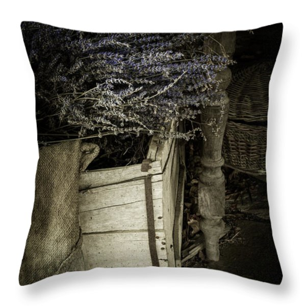 Lavandula Throw Pillow by Amy Weiss