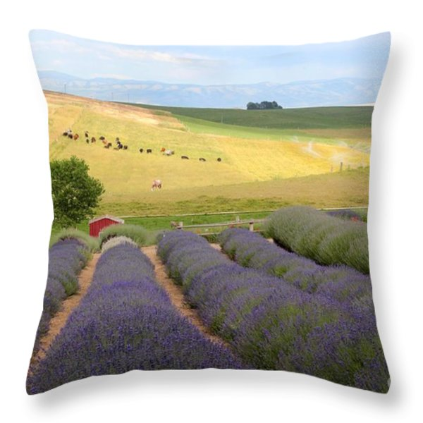 Lavender Valley Throw Pillow by Carol Groenen