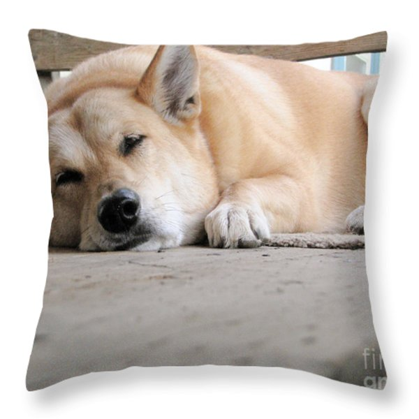 Lazin' On The Porch Throw Pillow by Rory Sagner