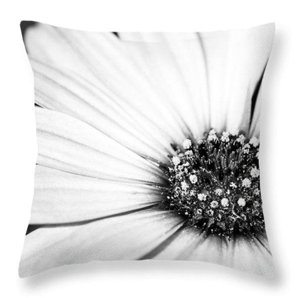 Lazy Daisy In Black And White Throw Pillow by Sabrina L Ryan