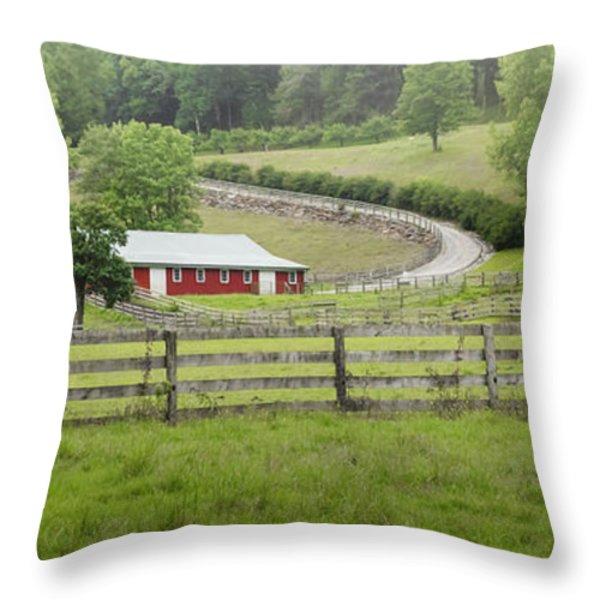 Lazy Hazy Summer Throw Pillow by Bill  Wakeley