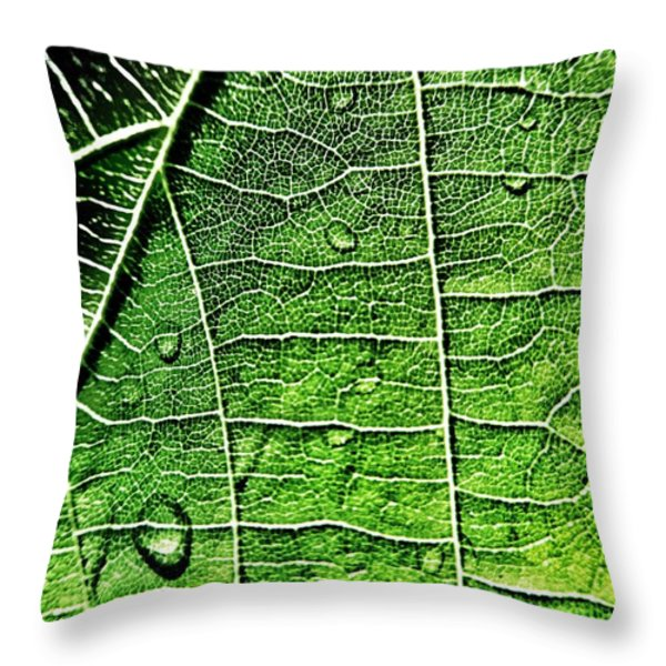Leaf Abstract - Macro Photography Throw Pillow by Marianna Mills