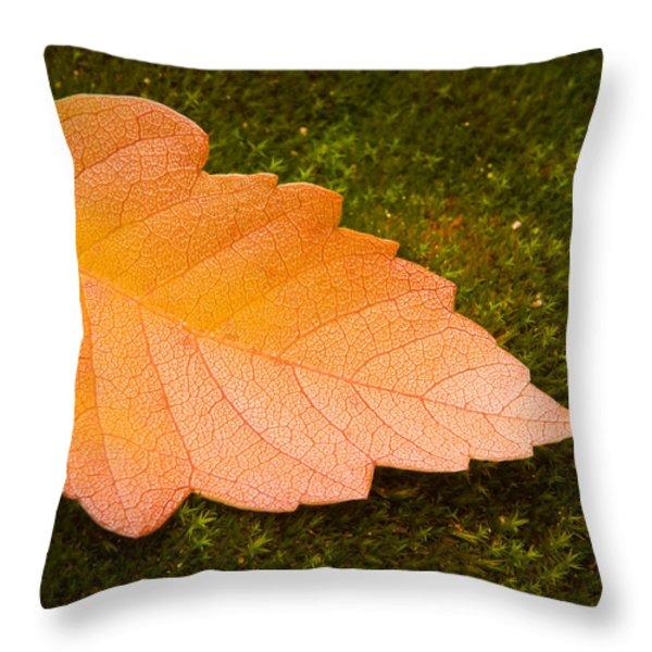 Leaf on Moss Throw Pillow by Adam Romanowicz
