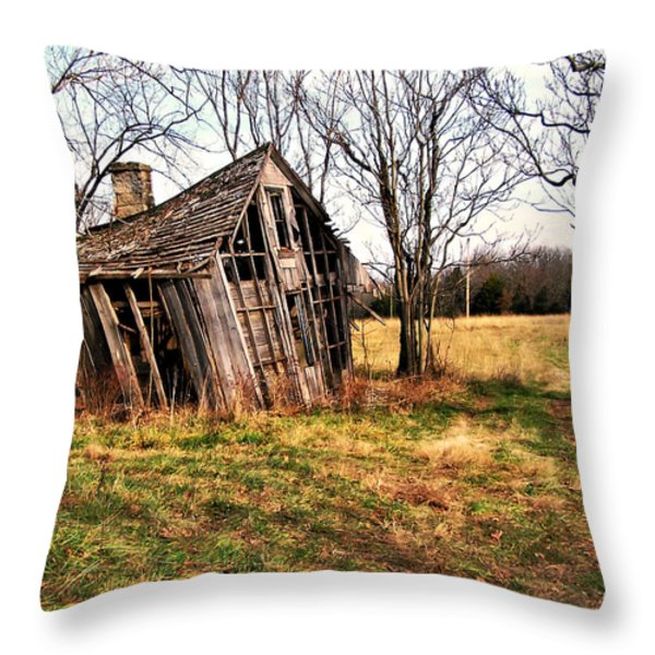 Lean To Throw Pillow by Marty Koch